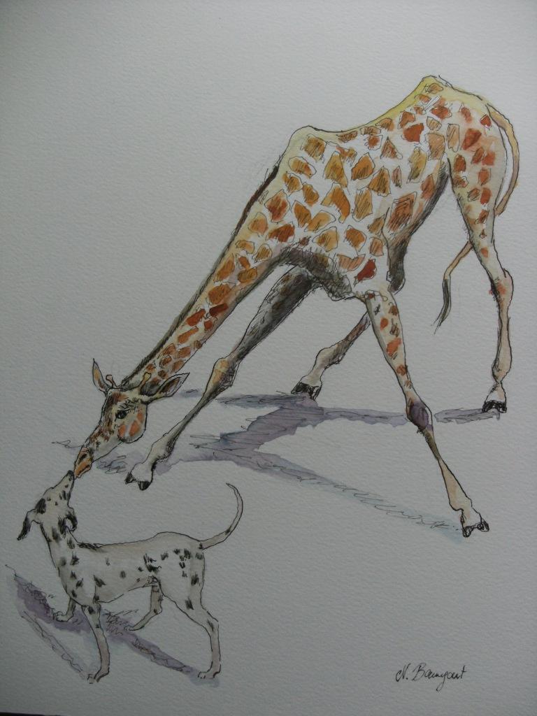 Amour-fou-Nadia-Baumgart-Zeichnung