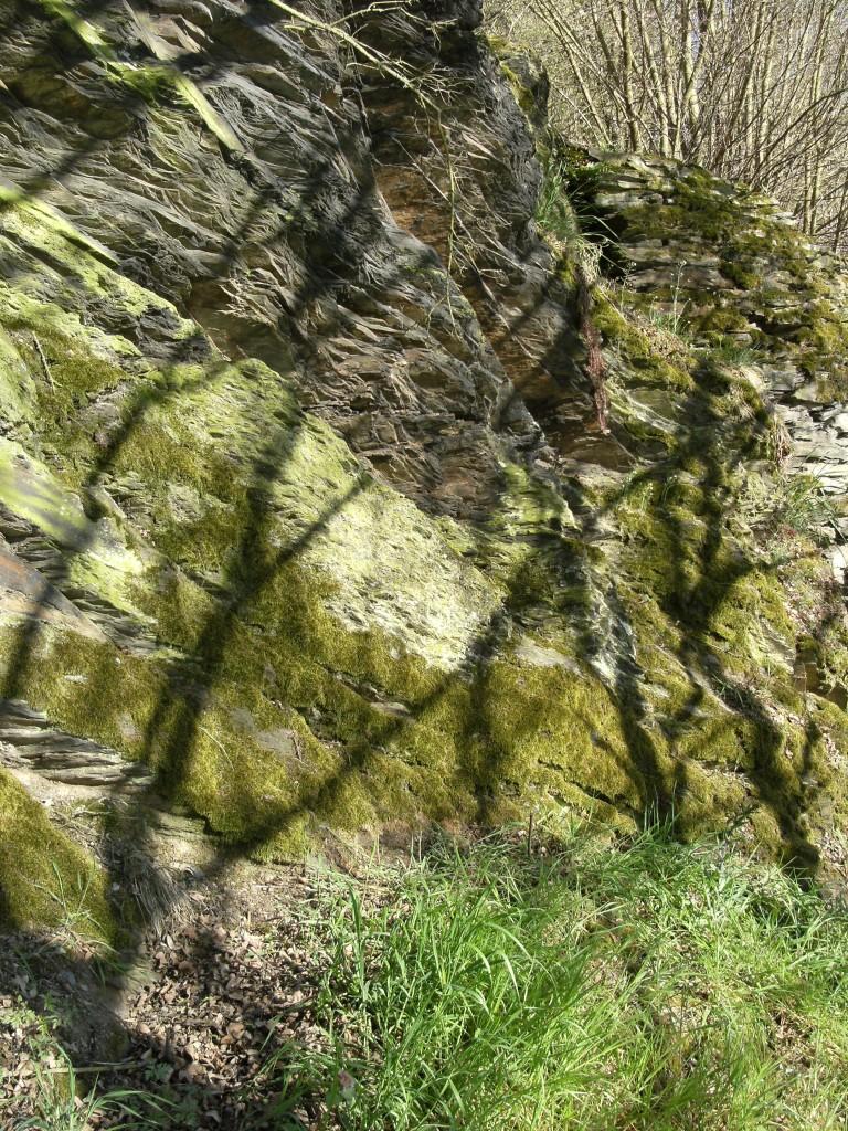 Felswand-am-Rheinsteig