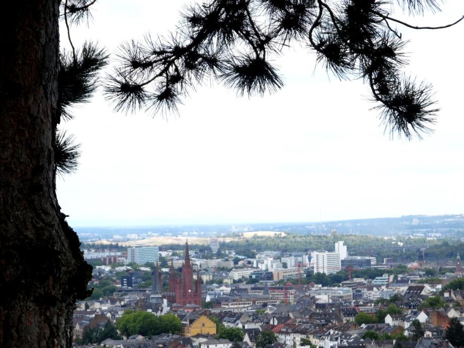Wiesbaden-Sicht-auf-die-Stadt-Nadia-baumgart