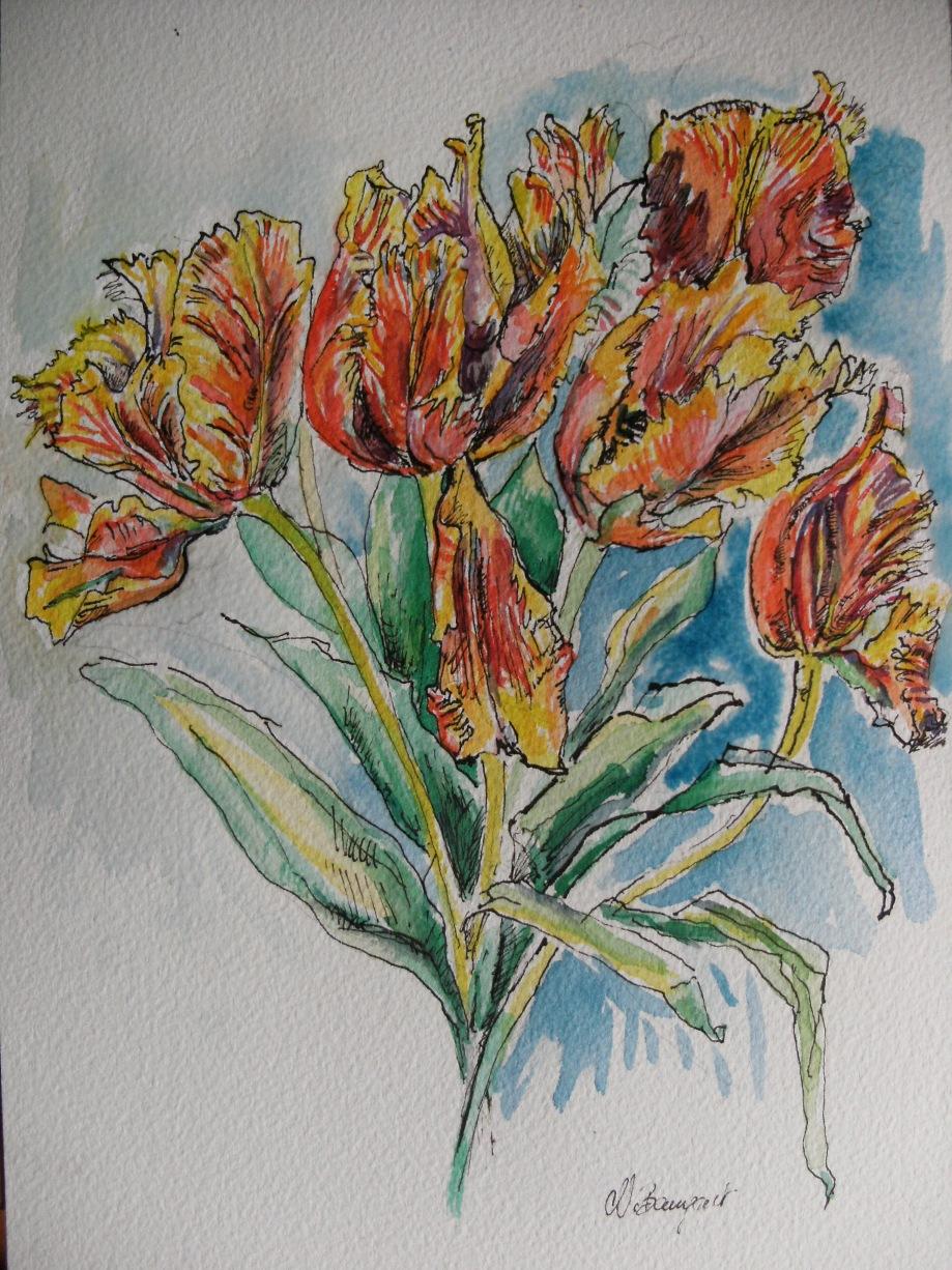 Verblühende-Tulpen-Zeichnung-Nadia-Baumgart