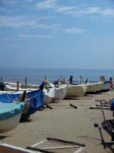 Barche-Laigueglia
