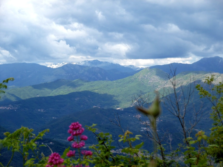 Vista-Alpi-Madonna-Guardia-Alassio-Nadia-Baumgart