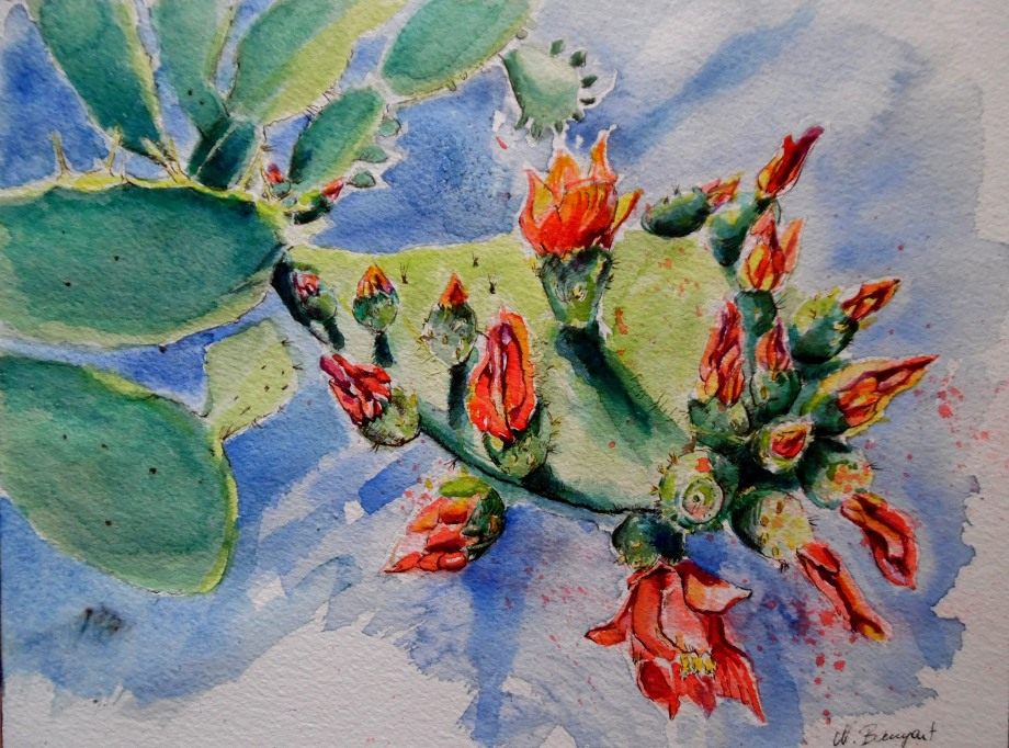 Opuntia-Watercolour-Aquarell-Nadia-Baumgart