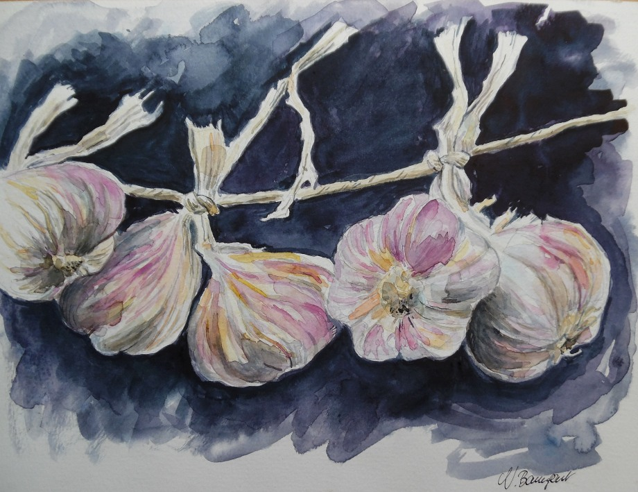 Etude-Knoblauch-Aquarell-Watercolour-Nadia-Baumgart