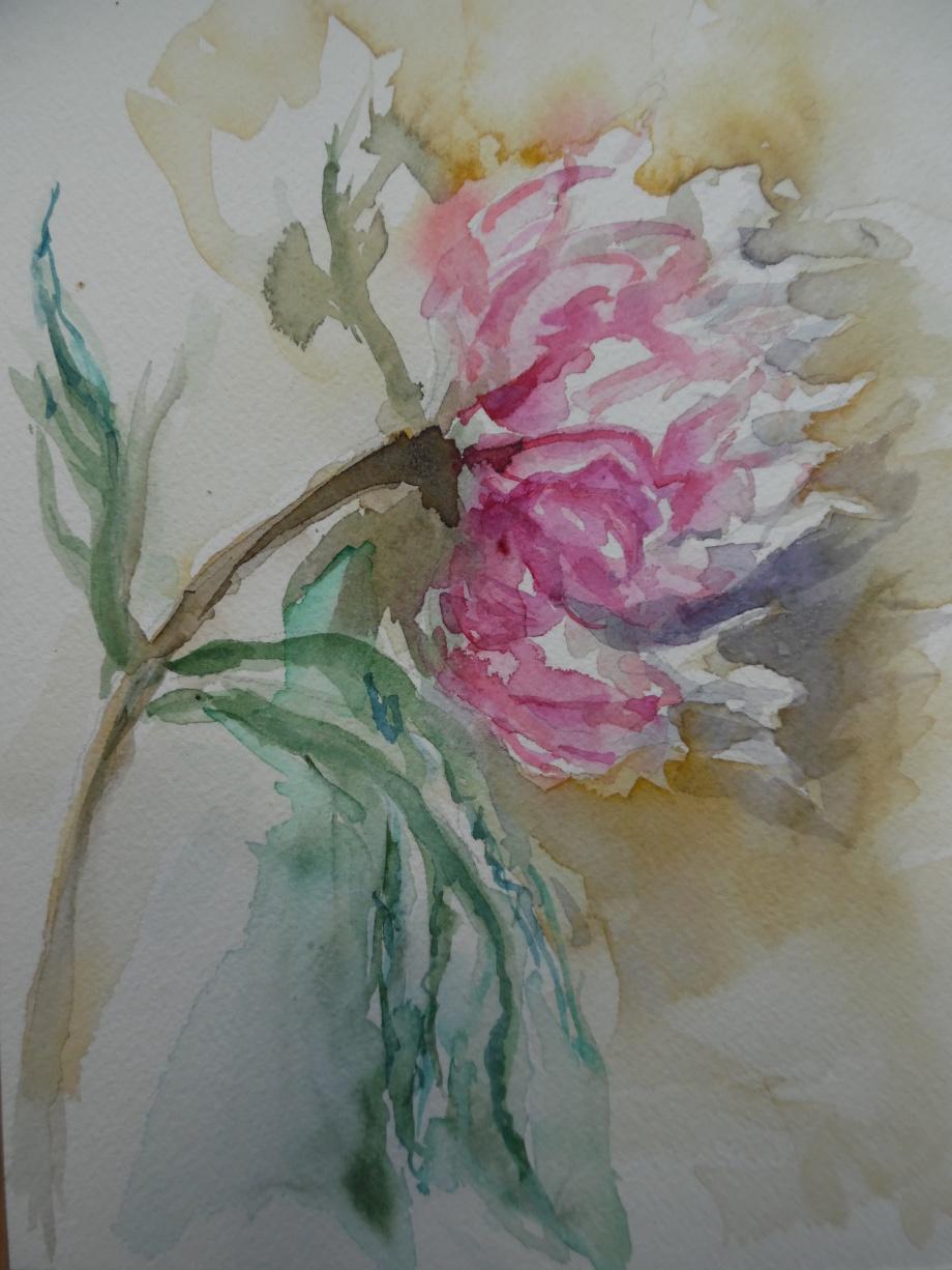 Fiore-Estate-Nadia-baumgart