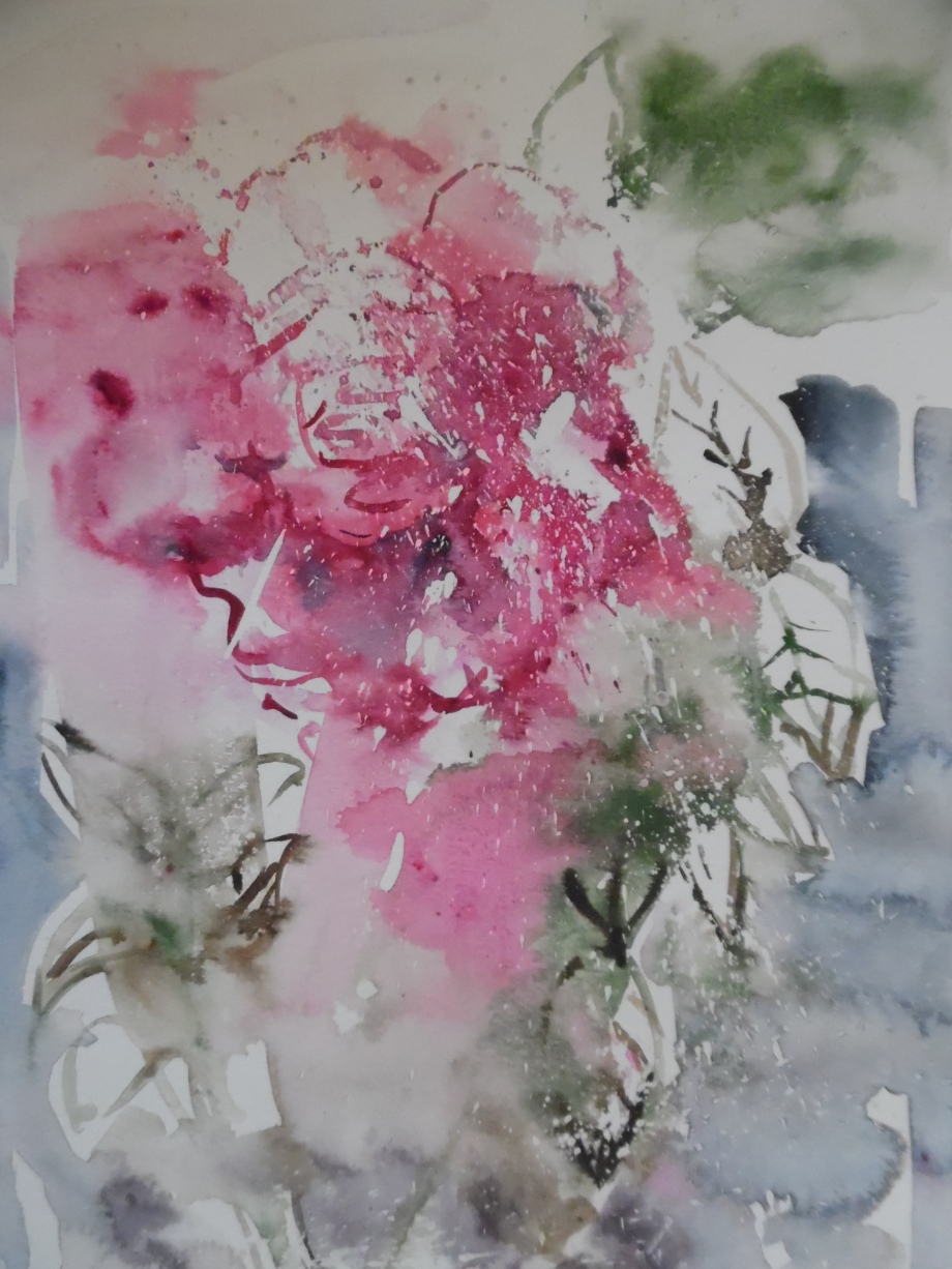 Rose-Aquarell-Watercolour-Nadia-Baumgart