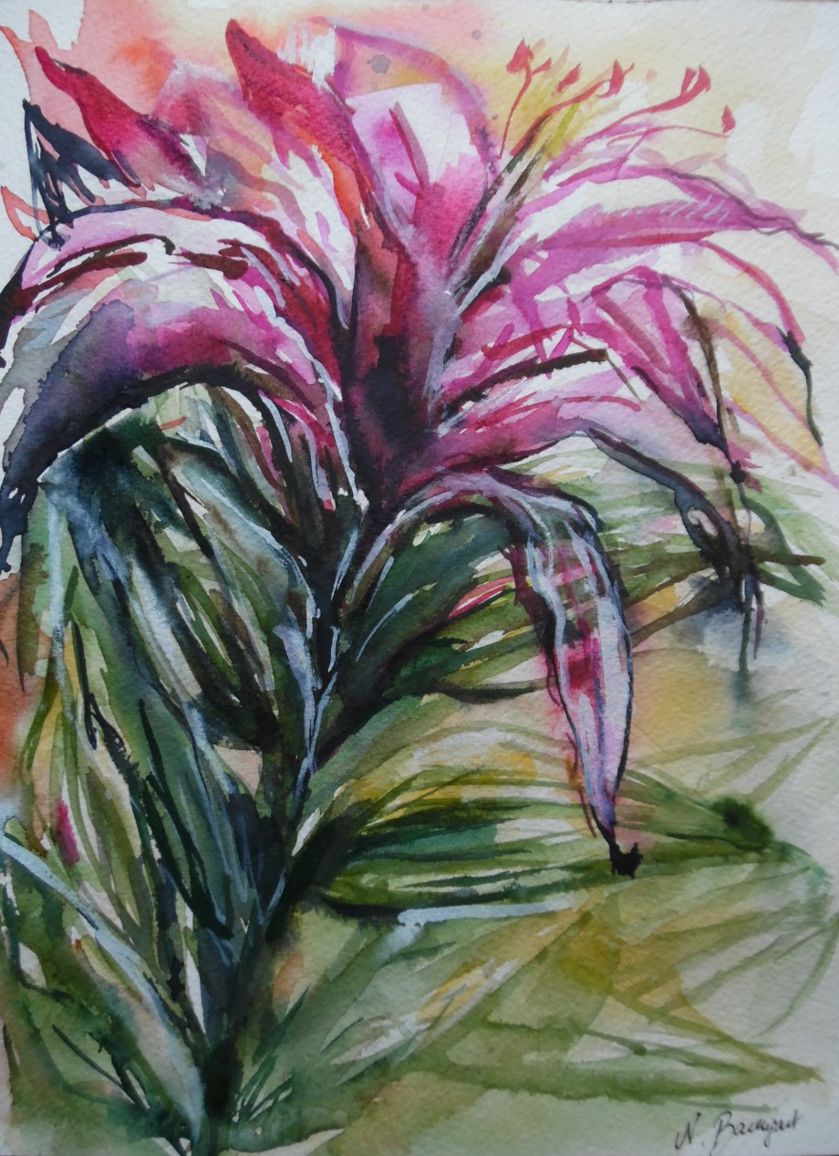 Wild-Flower-wilde-Blume-aquarell-Watercolour-Nadia-baumgart