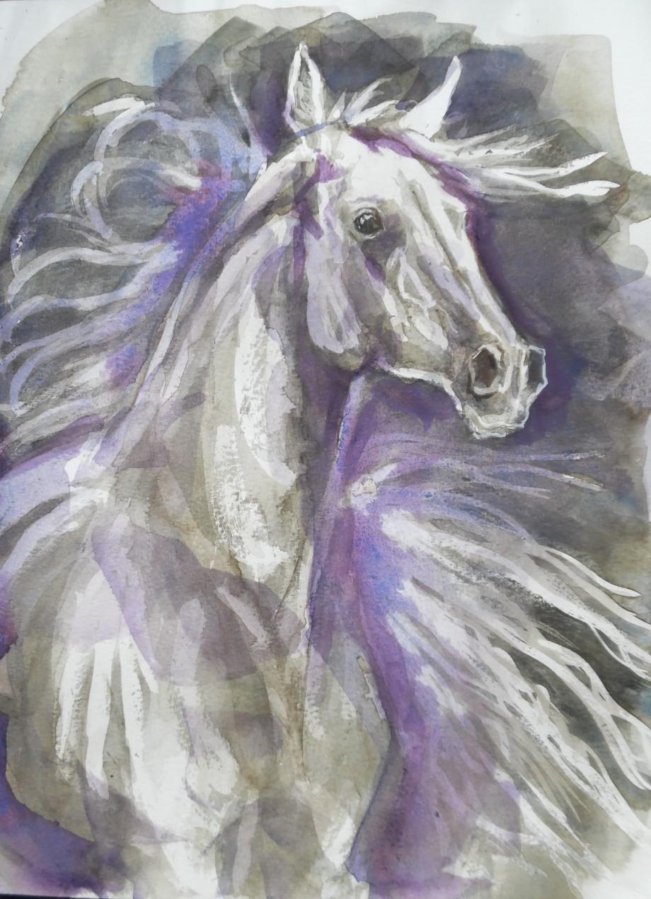 Horse-Pferd-Cavallo-Aquarell-Watercolour-Nadia-Baumgart