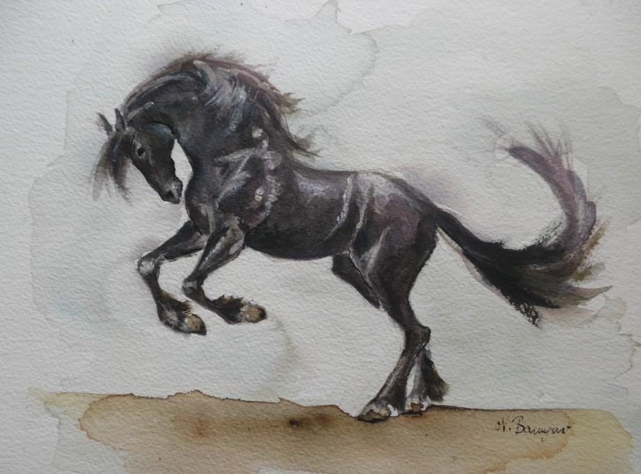 Schwarzes-Pferd-Black-horse-Aquarell-Nadia-Baumgart
