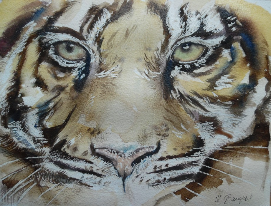 Tiger-Tigre-Aquarell-Watercolour-Nadia-Baumgart