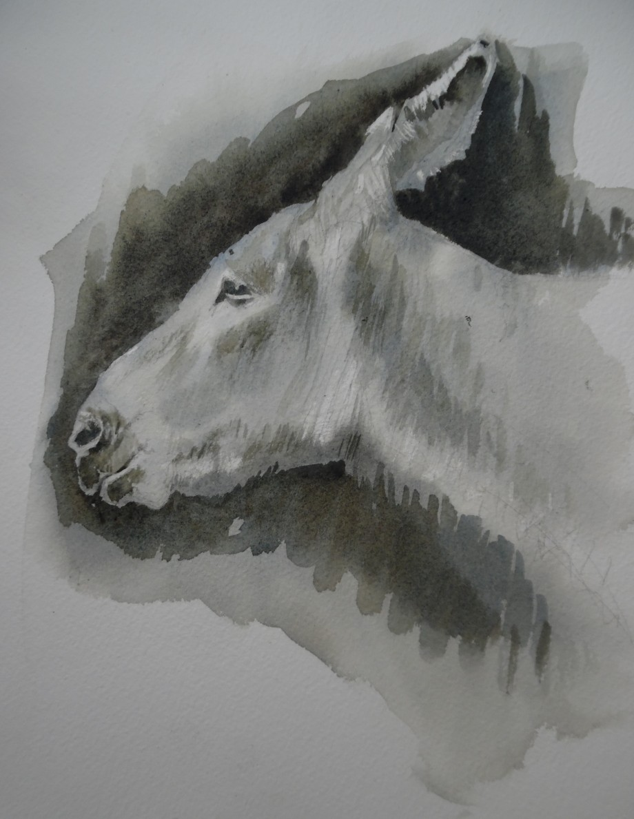 Patience-Esel-Aquarell-Watercolour-Nadia-Baumgart