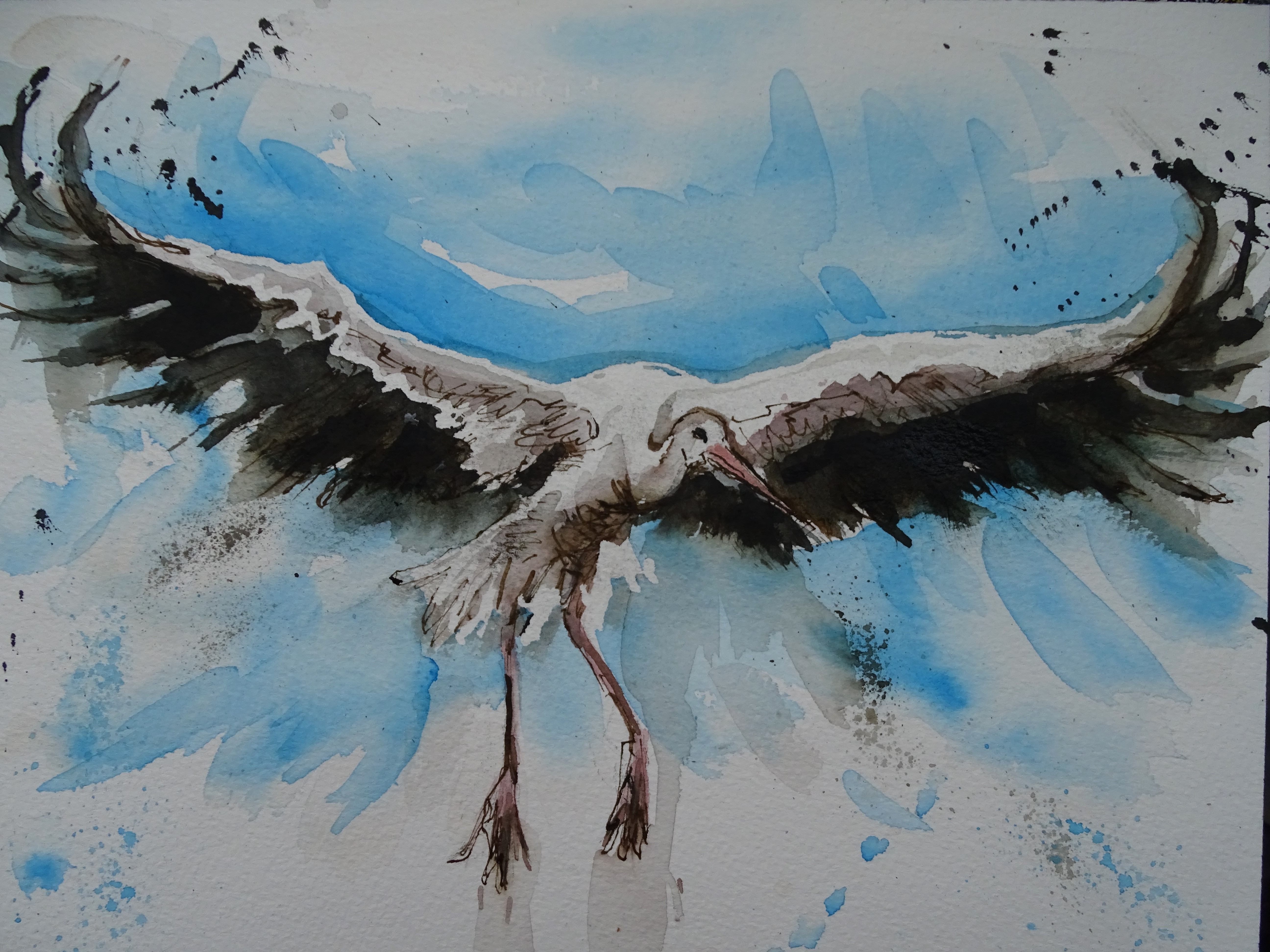 Cigogne-Stork-Aquarell-Fliegender-Storch-Nadia-Baumgart