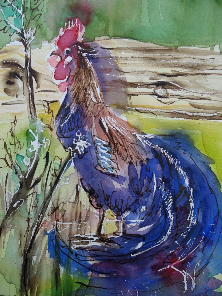 Hahn-Aquarell-Watercolor-Nadia-Baumgart