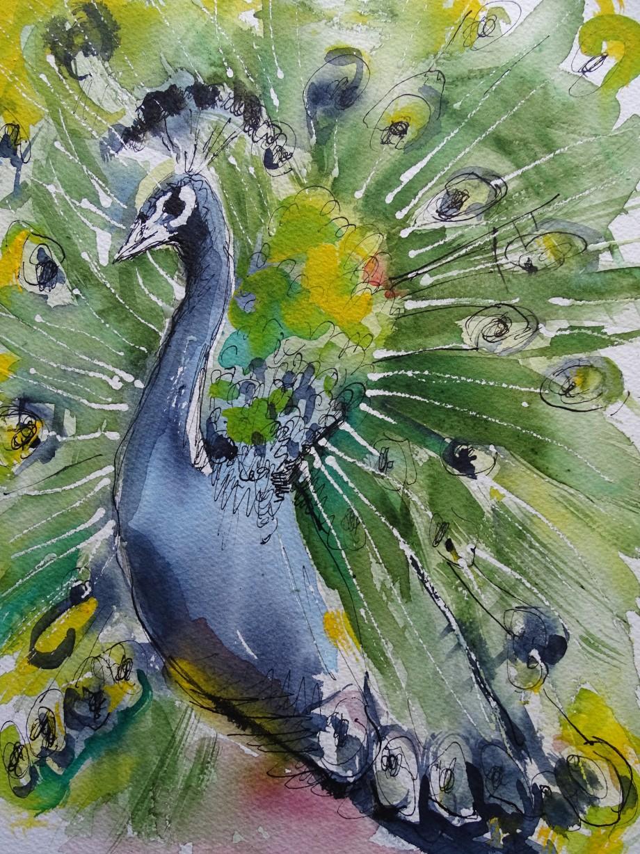 Pfau-Pavone-Aquarell-Watercolour-Nadia-Baumgart