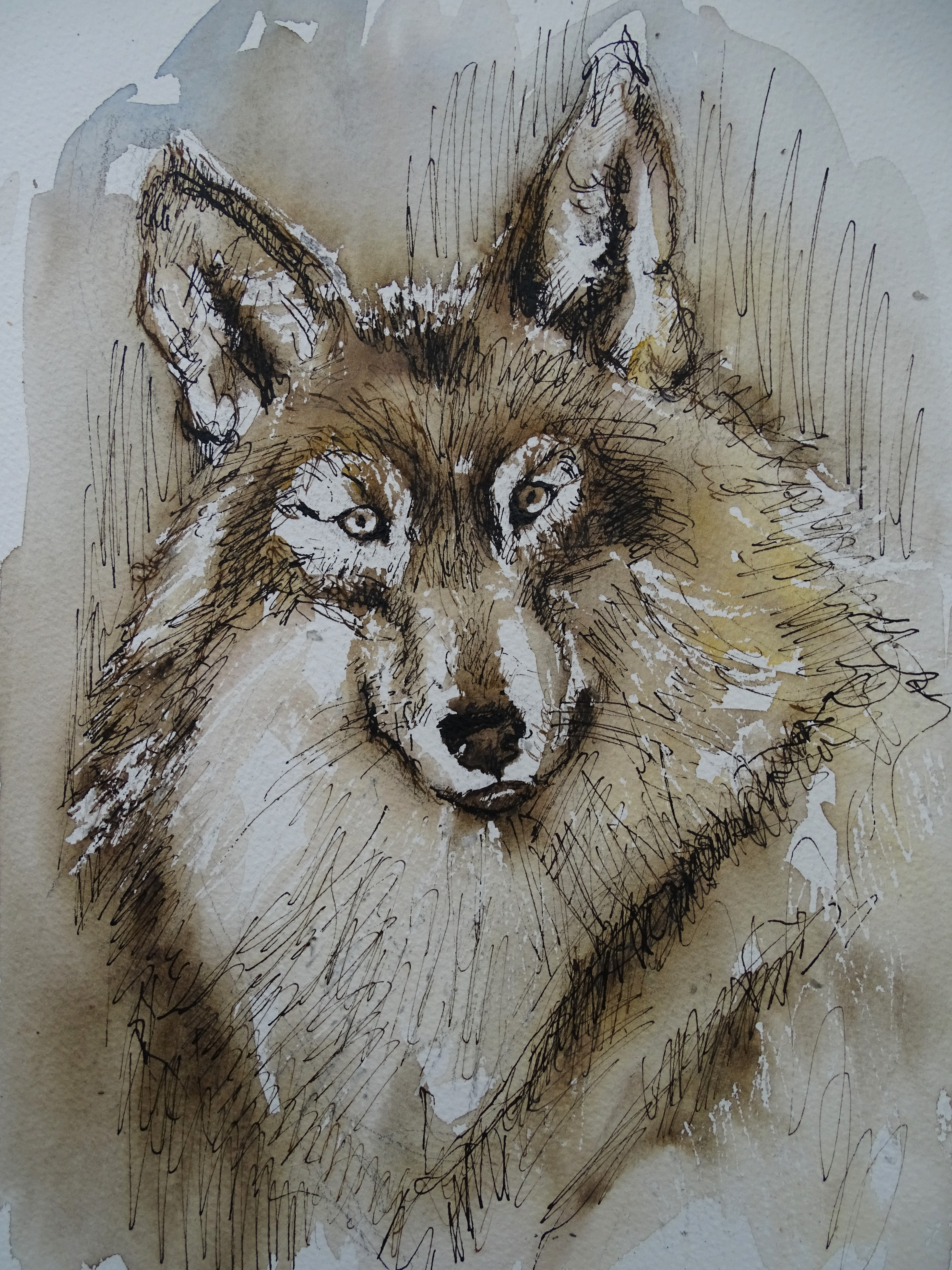 Wolf-Aquarell-Nadia-Baumgart