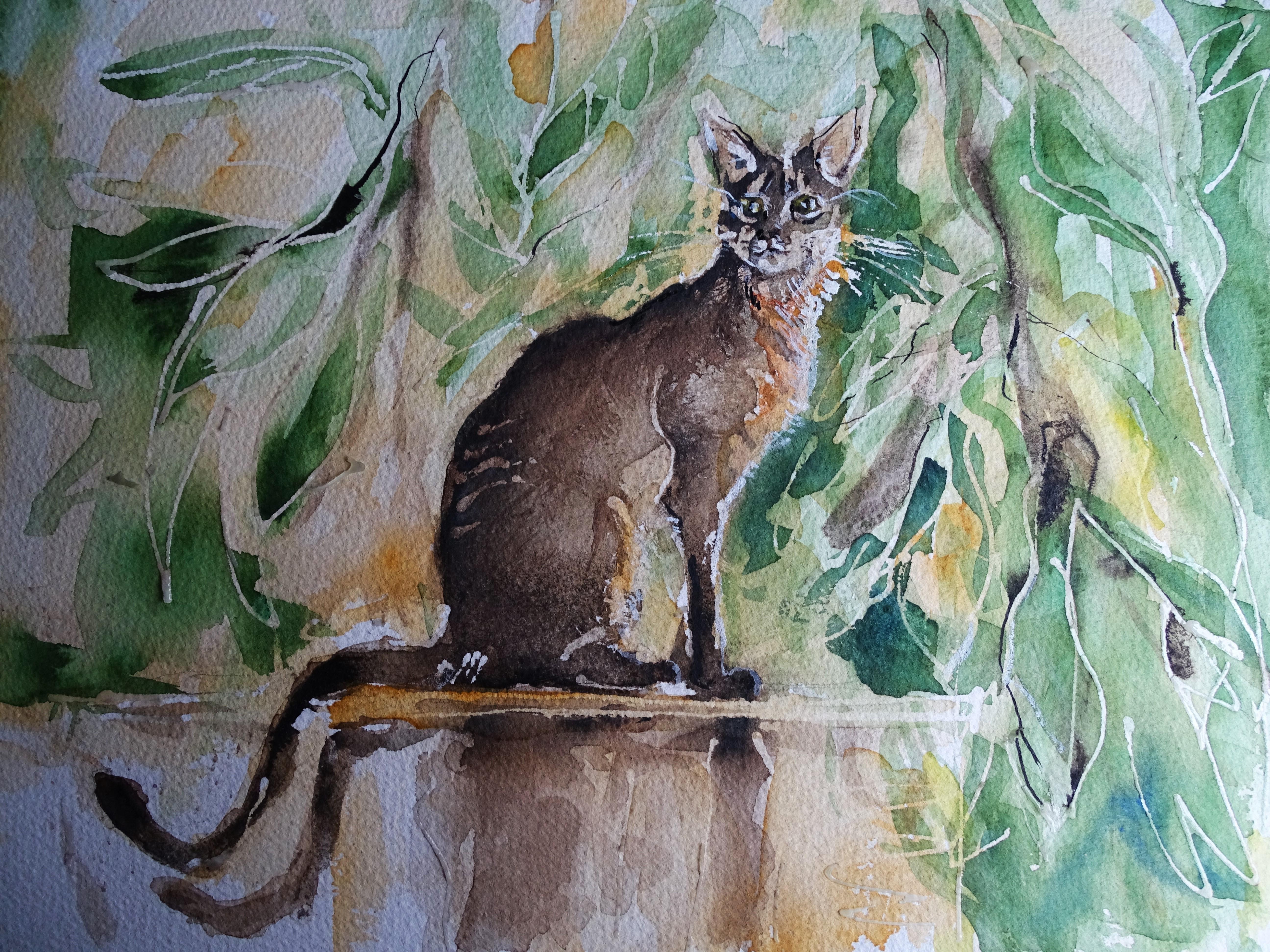 Abissinian-cat-watercolour-Nadia-Baumgart