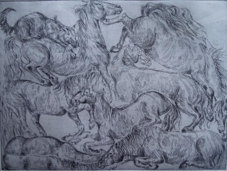 Pferde-Kaltnadelstich-Nadia-Baumgart
