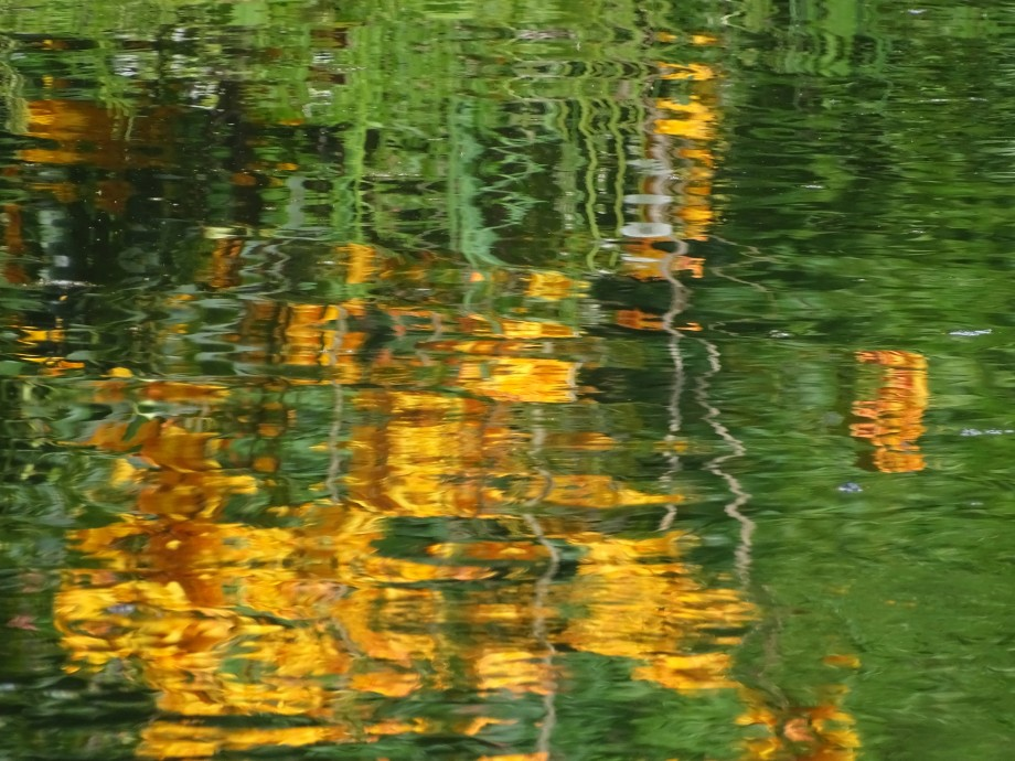 Reflections-Photo-Nadia-Baumgart