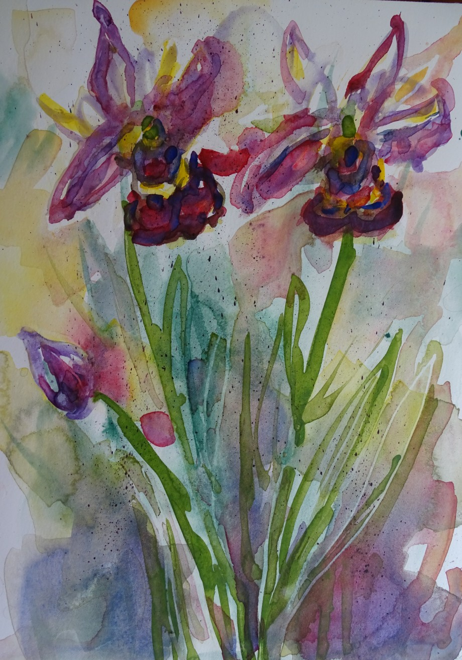 orchidées-aquarelle-nadia-baumgart