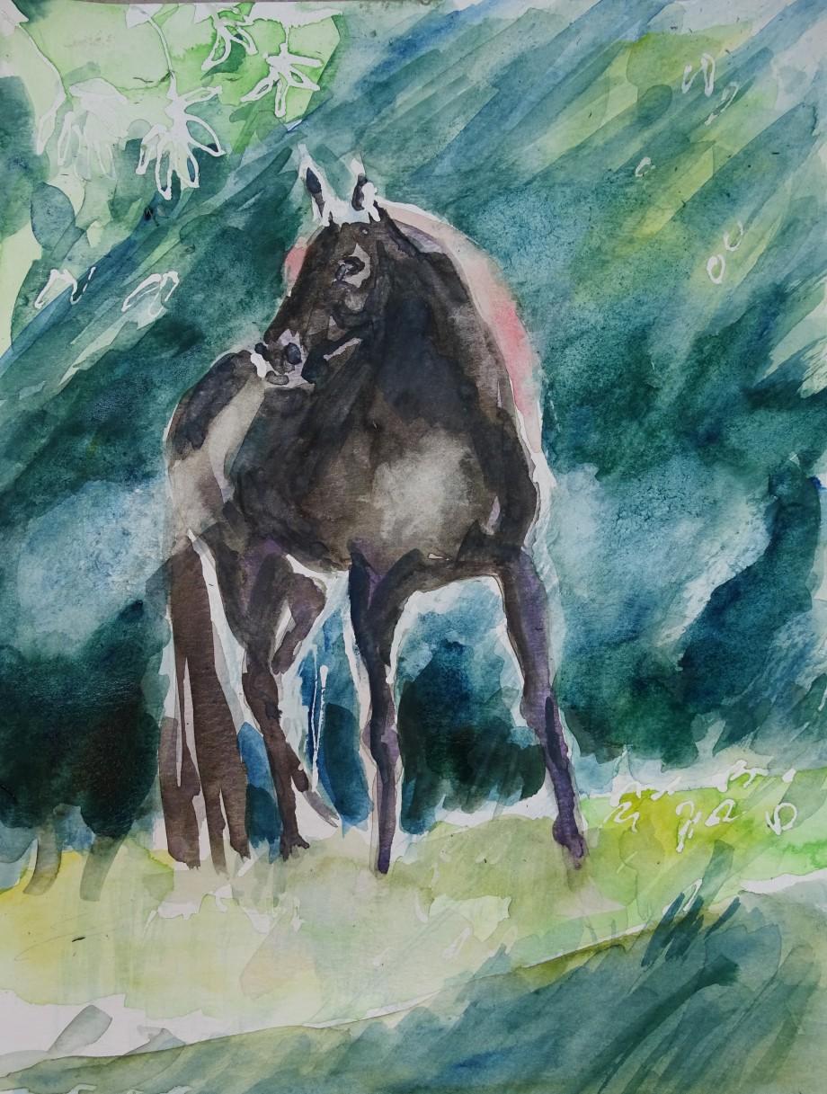 Wildes-Pferd-Aquarell-Nadia-Baumgart