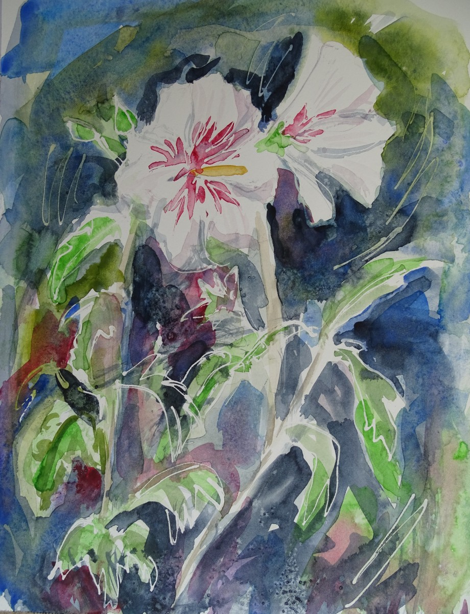 Hibiscus-Watercolour-Nadia-Baumgart
