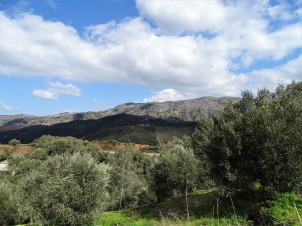 cretan-landscape-nadia-baumgart