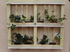 Blumen-Kiste-2
