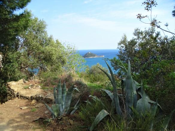 Island-Gallinara