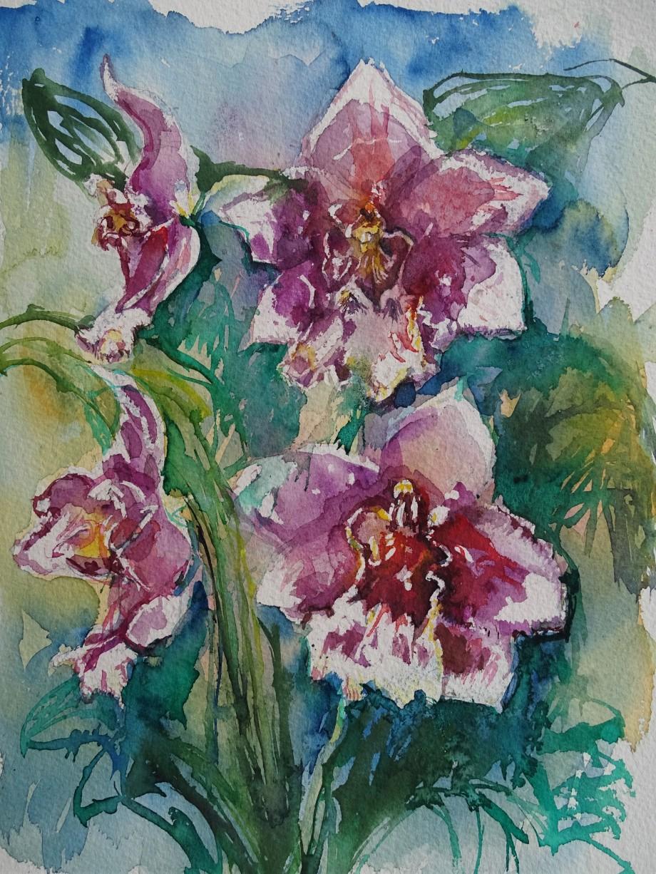 Orchideen-Orchids-Aquarelle-Watercolour-Nadia-Baumgart