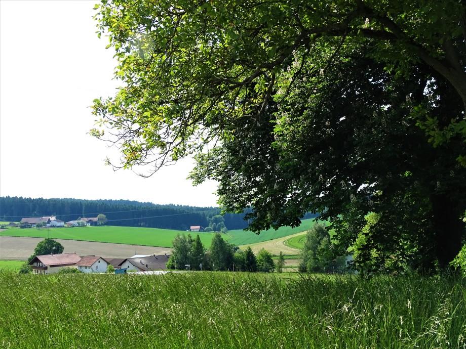 Landschaft-Brunndoebel-Foto-Nadia-Baumgart