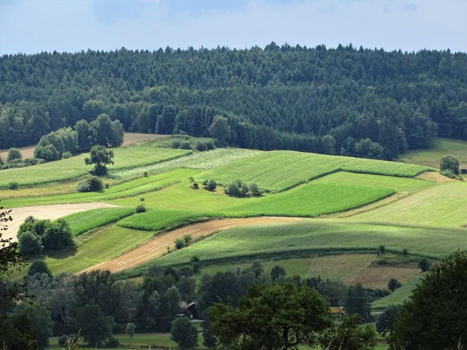 Niederbayrische-Landschaft-Foto-Nadia-baumgart