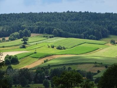 Landschaft bei Triftern