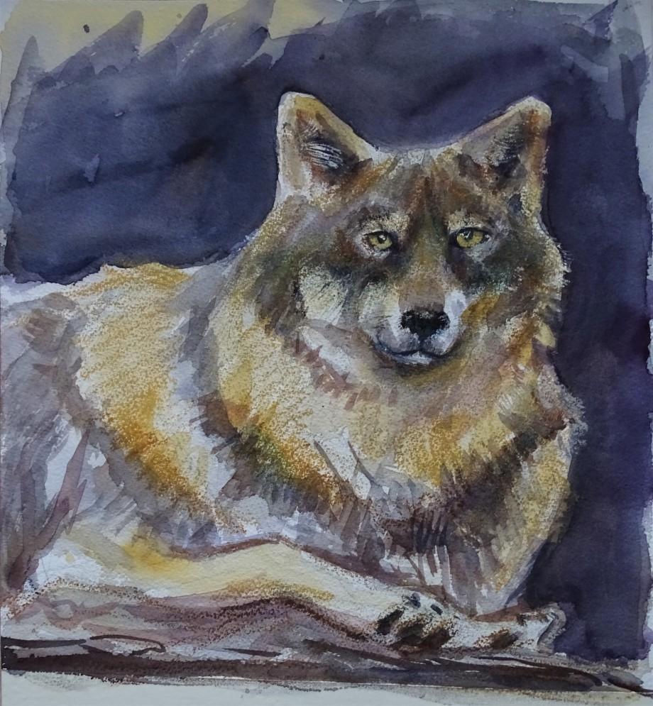 Wolf-Malerei-Nadia-Baumgart