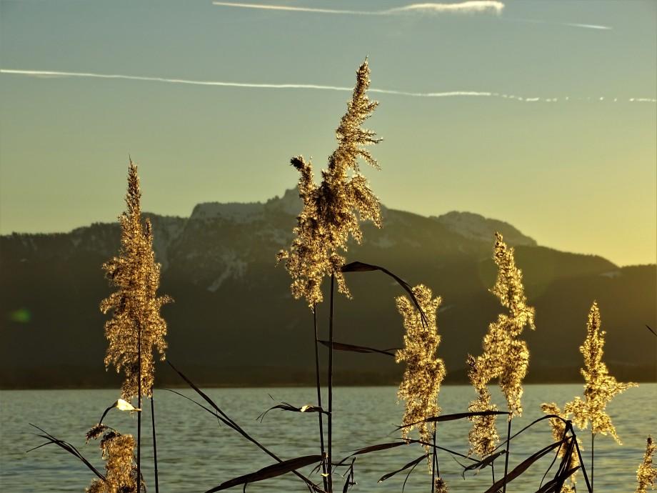 2- Chiemsee-Foto-Nadia-Baumgart