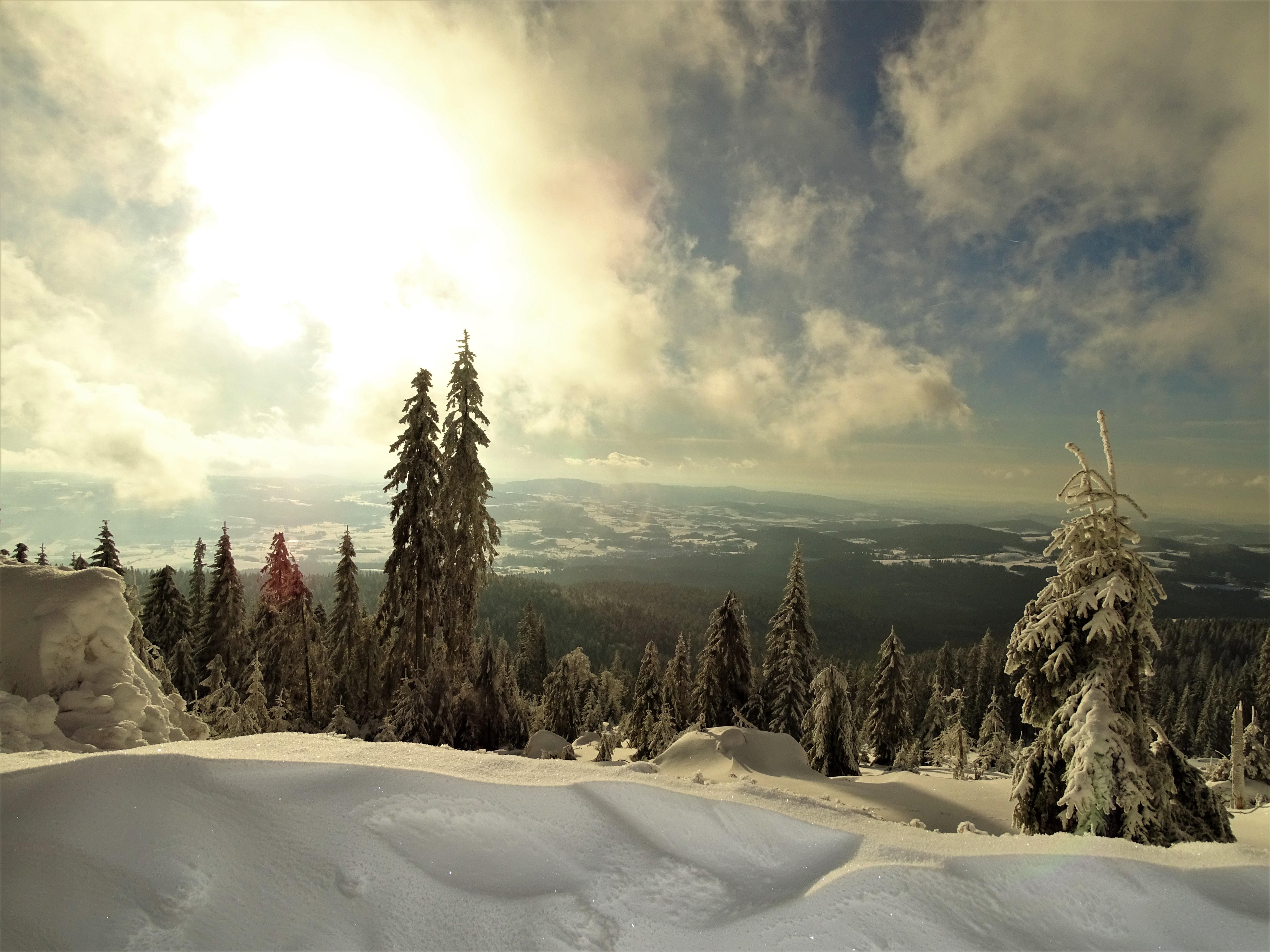 2-Dreissel-im-Winter-Foto-Nadia-Baumgart