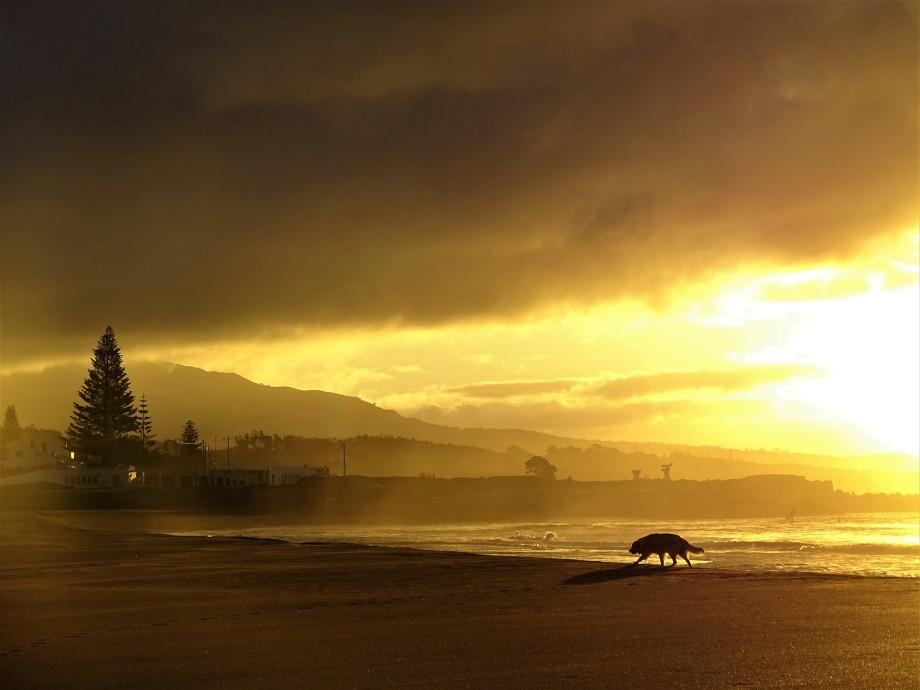 1-Sonnenaufgang-auf-den-Azoren-Foto-Nadia-Baumgart