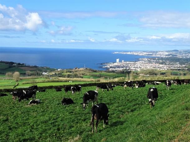 1-Wandern-Azoren-Foto-Nadia-Baumgart