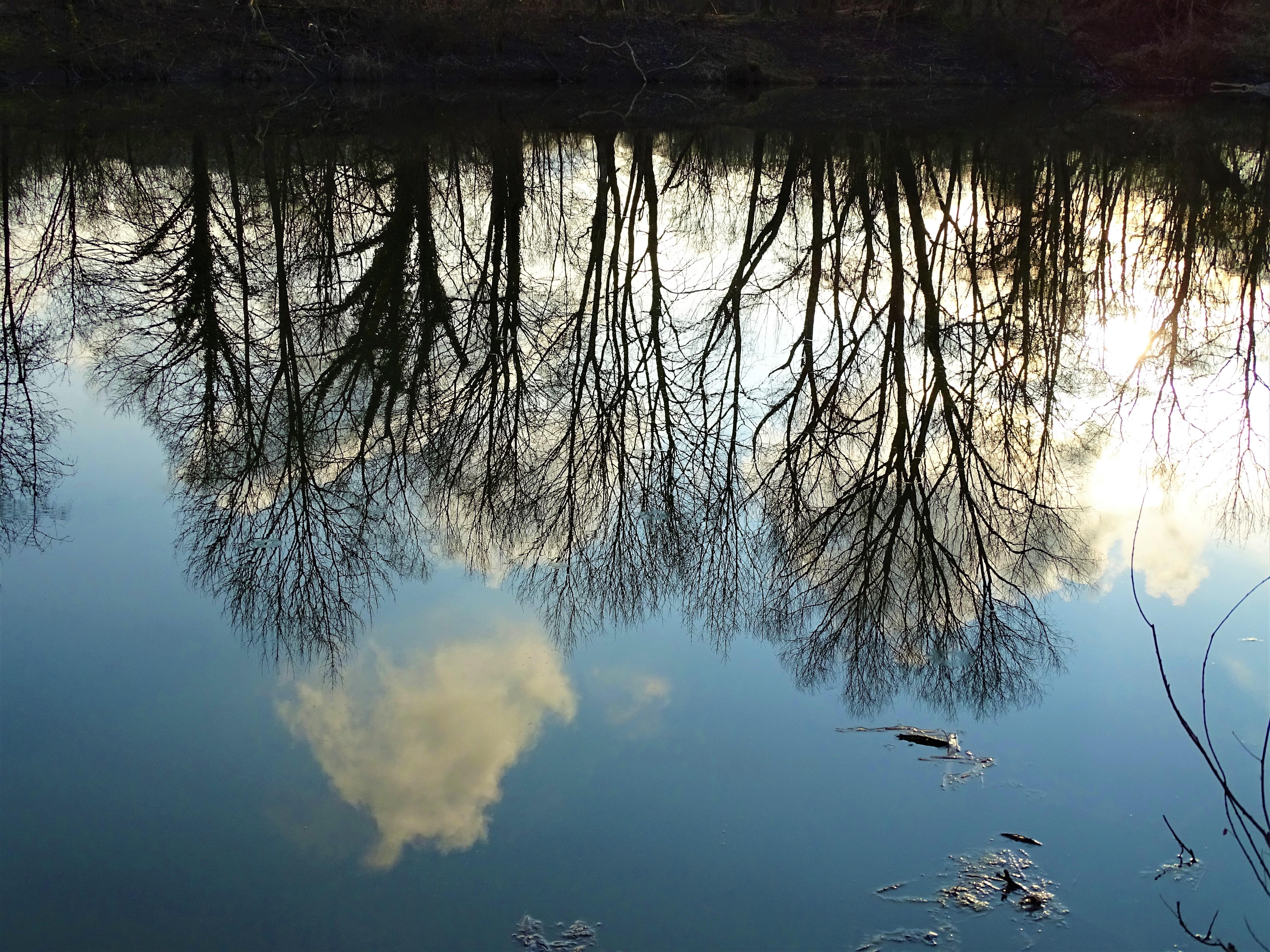 4-Kurpark-Bad-Birnbach-Foto-Nadia-baumgart
