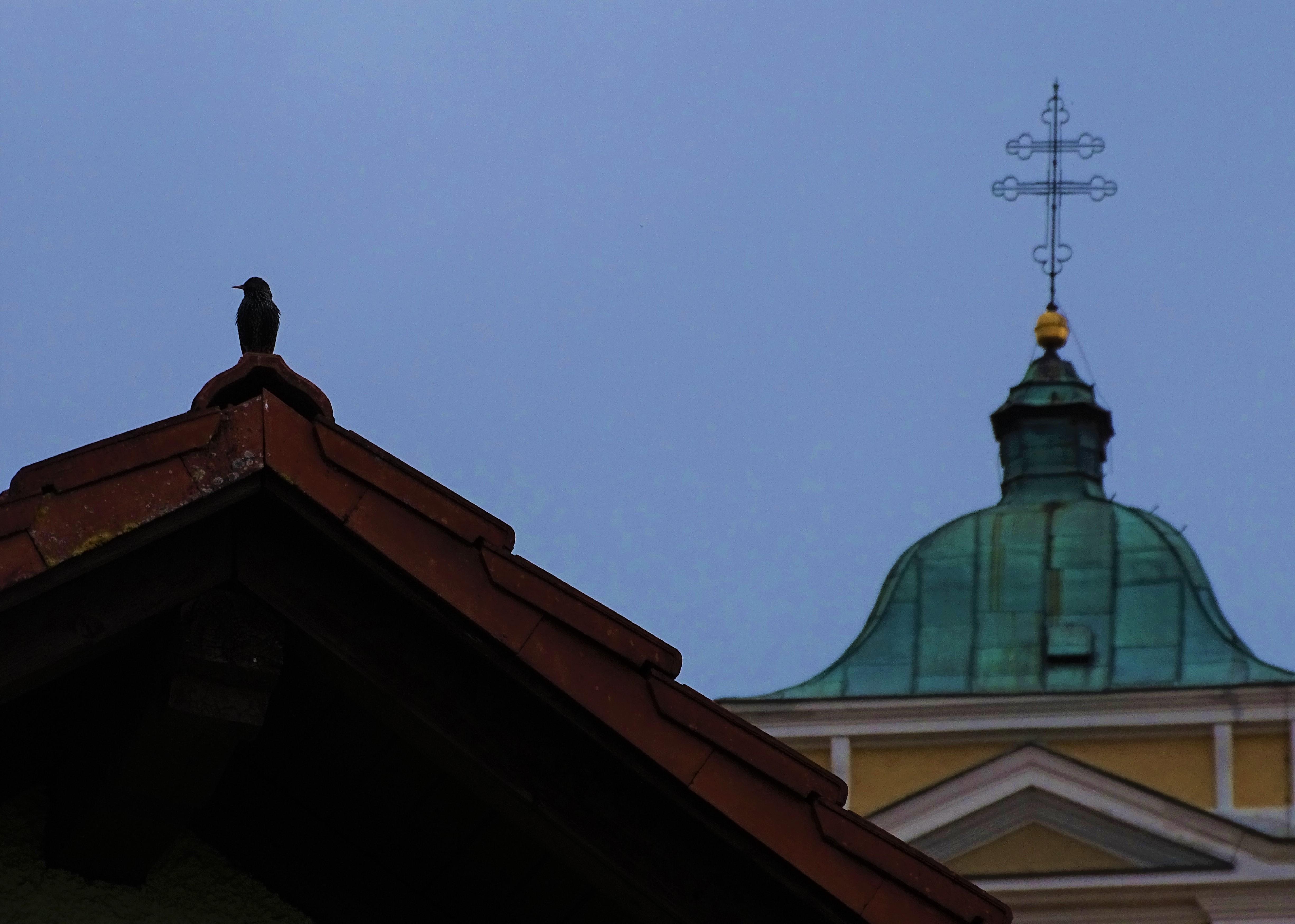 5-Bad-Birnbach-Fruehling-Foto-Nadia-Baumgart