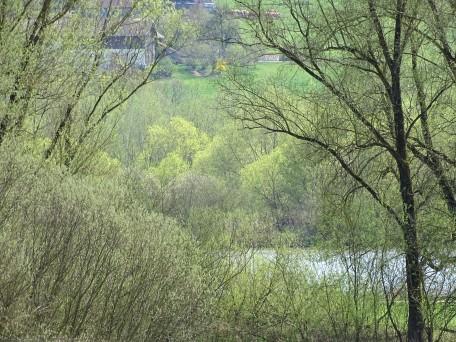 1-Fruehling-Rottal-Radweg-Foto-Nadia-Baumgart (4)