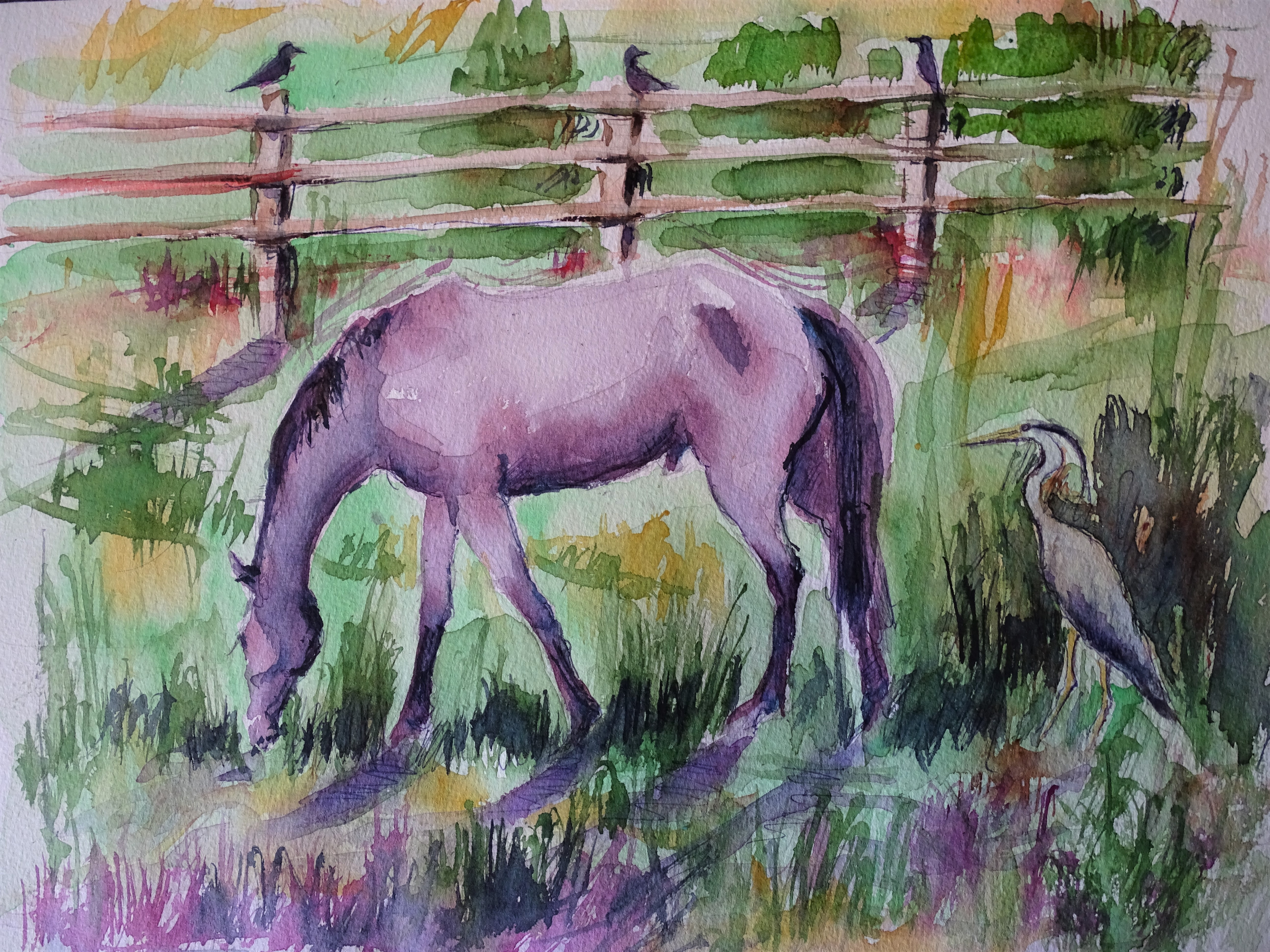 cheval-aquarelle-Nadia-Baumgart
