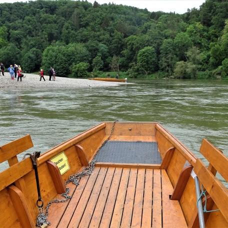 Zille auf der Donau