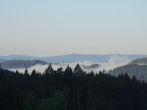 Landschaft im Zellertal