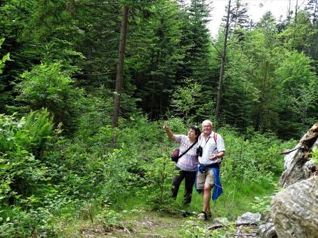 Im Bayerischen Wald - Zellertal