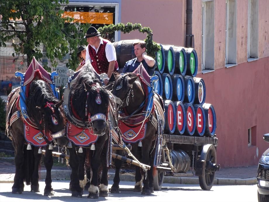 2-Brauereipferde-Zwiesel