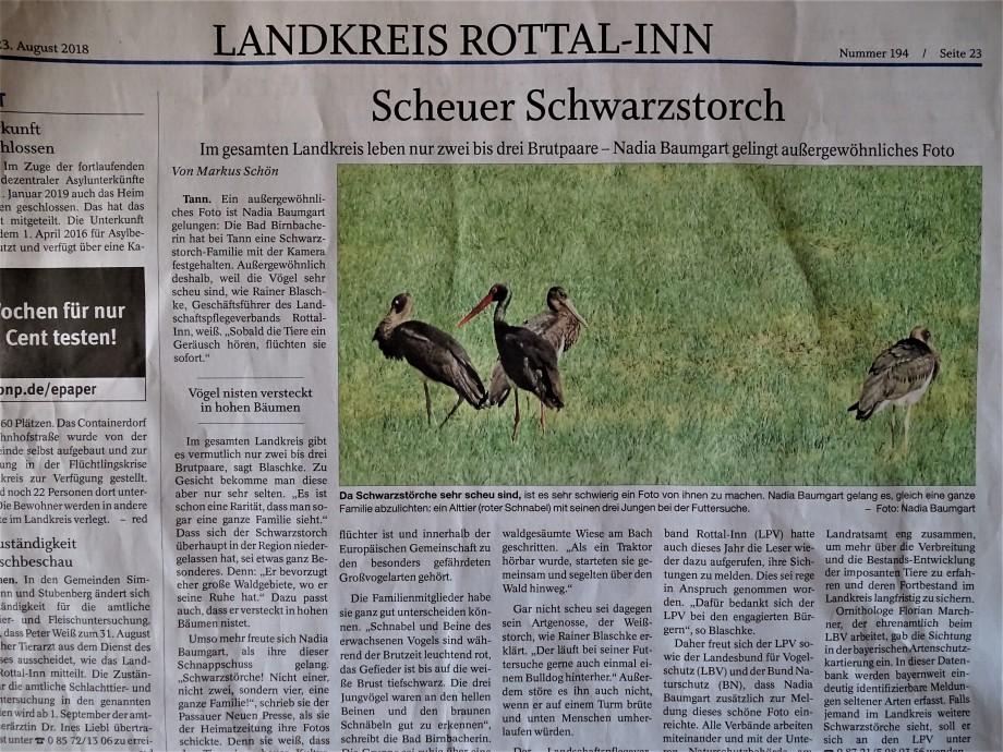 pnp-schwarzstoerche-rottal-inn-nadia-baumgart