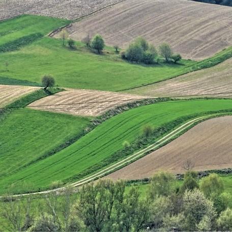 1-abstrakte-landschaft-Lengsham-Rottal-Nadia-Baumgart