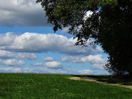 2-Rottaler_Landschaften-Nadia_Baumgart