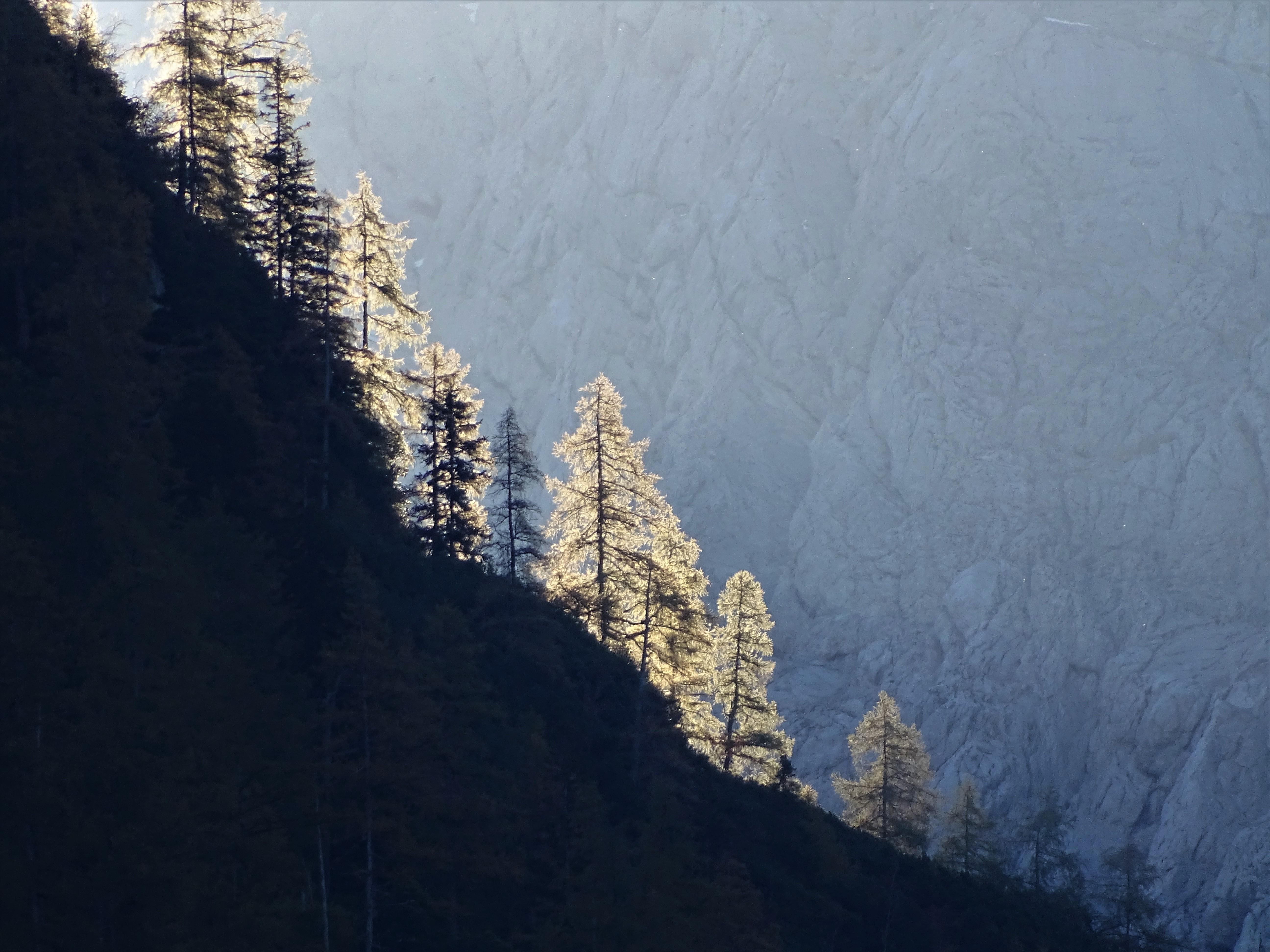 1-Alpen_Foto_Nadia_Baumgart