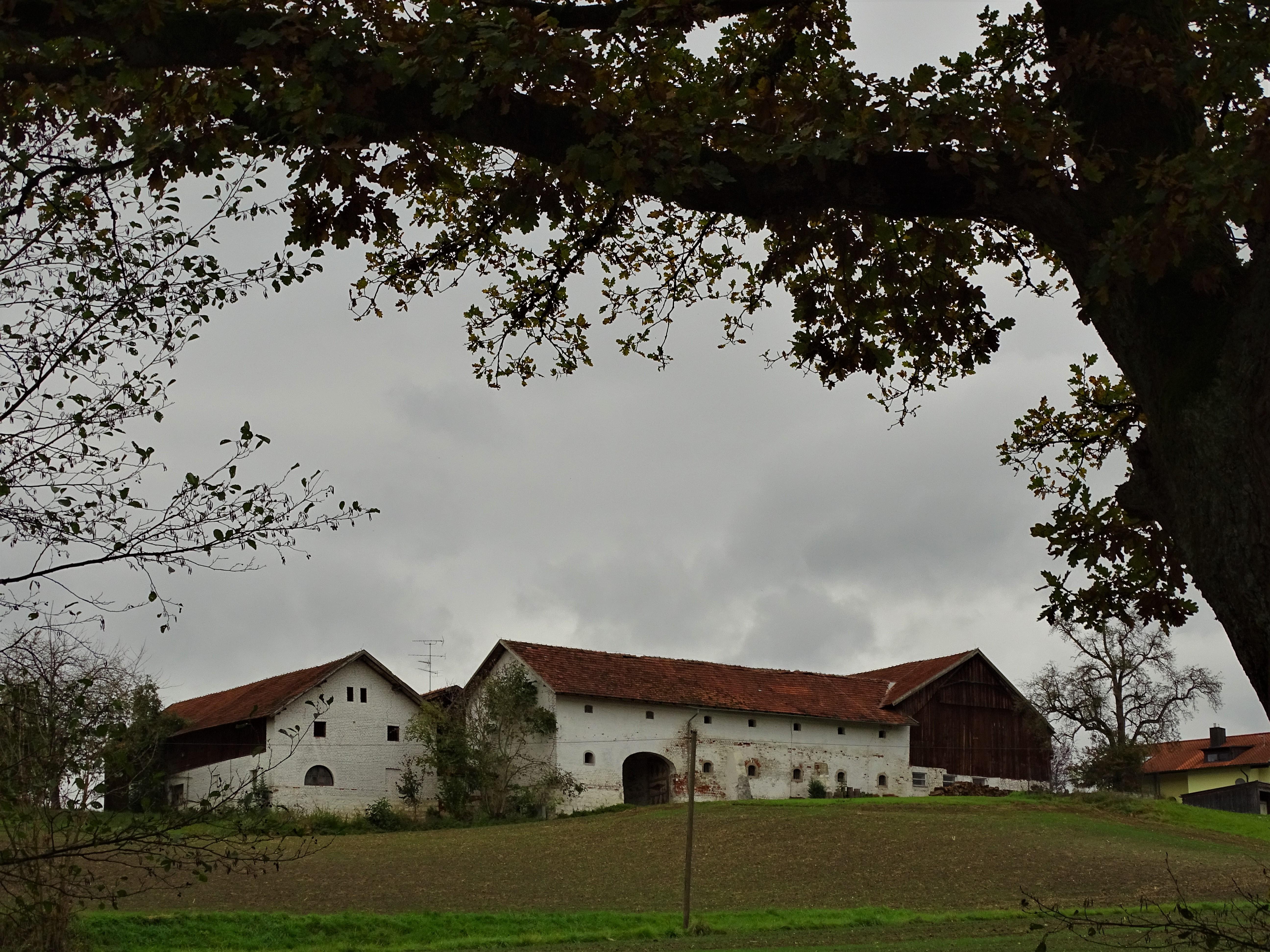 3-Sternsteinhof_nadia_baumgart